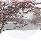 Winter Wonderland by Poete100