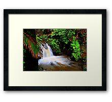 hawaiian botanical gardens Framed Print