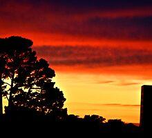 Sunset San Francisco by Marina Wainwright