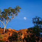 Moonrise over gorge. by Ian Beattie