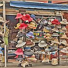 A Lot of Hats by Elaine Teague