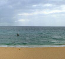 Cottesloe Beach panorama WA by Jeddaphoto