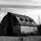 Vinton County Barn by hubcap