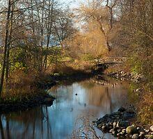 Bridge in Stanley Park by jadennyberg