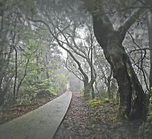 Misty Mountain Path by George Petrovsky