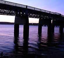 The Tay Rail Bridge by dgscotland