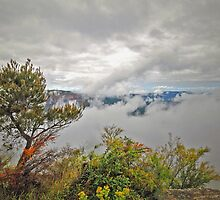 Mountain Mists Rising by George Petrovsky