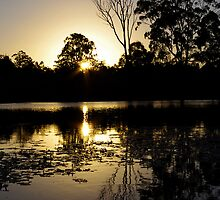Mingara waters by Penny Kittel