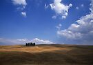 Tuscan Hillside Italy by Andrew Bret Wallis