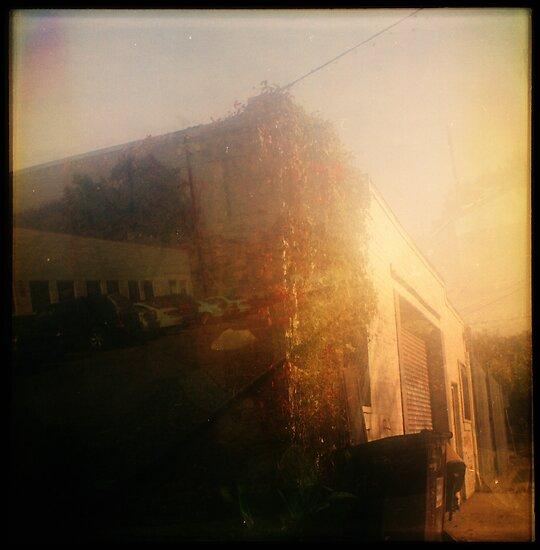 sunset storage by Jill Auville