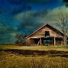 Hwy. 82 Barn by Barbara Simmons