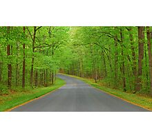 Winding Road to Somewhere Photographic Print