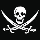 Pirate (Jolly Roger) Flag by Jeff Vorzimmer