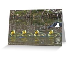 Four Rubber Goslings Greeting Card