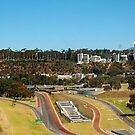 Kings Park From The Big Wheel. by Eve Parry