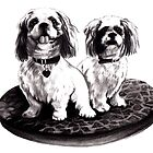 Shih tzu dogs - prints by Lauren Eldridge-Murray
