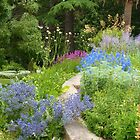 Heronswood Perennial Border by Jeanette Varcoe