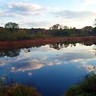 Mirror, Mirror ~~ Ringwood Mill Pond, Ringwood NJ by Jane Neill-Hancock