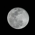 Full Moon by Julian Lowry