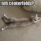 Centerfold Cat by shandab3ar
