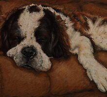 Saint Bernard Dog Portrait by Sue Deutscher