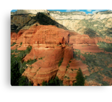 Majestic Views from the Sky Metal Print