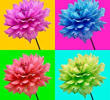 Dahlia Brightly Coloured Wall Art by Natalie Kinnear