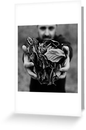 i give you leaves by Victor Bezrukov