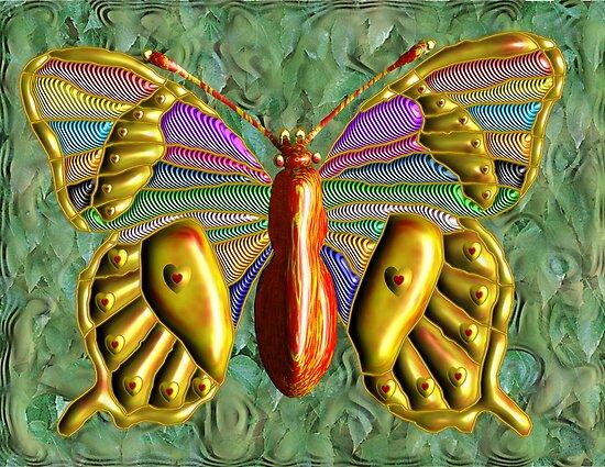 Butterfly  by Johnkinman