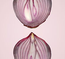 Food - Vegetable - Cross section of a Red Onion by Mike  Savad