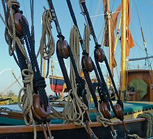 Rigging by JEZ22