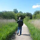Take a stroll by Ann Persse