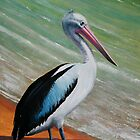 Pelican (oil) by Anthony Superina