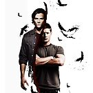 Supernatural, ravens by cedd1