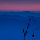 Dusk in the Smoky Mountains by andrewsound95