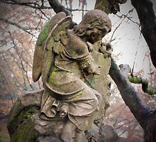 Old Gray Cemetery-1860 by Michael Byerley