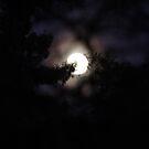 Bad Moon Rising by teresalynwillis