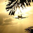 St Maarten Private Jet by Julian Lowry