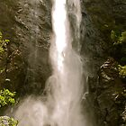Ellenborough Falls by peasticks