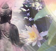 Garden Meditations... by Emma  Wertheim ~