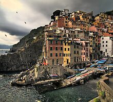 Riomaggiore at sunset by katta
