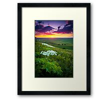 Palouse Flowers Framed Print