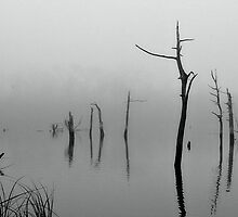Floating by SuddenJim