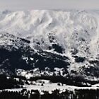 Alps panorama by jonwhitehead