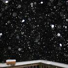 Snow at Night by Nigel Cummings
