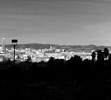 San Francisco skyline from Dolores Park part two by Confundo