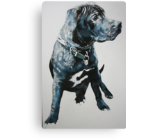 Staffie Canvas Print