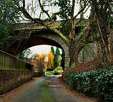 Loose - Salts Lane & Viaduct by Dave Godden