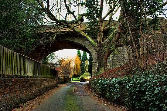 Loose - Salts Lane & Viaduct by Dave Godden