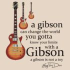 A Gibson Guitar Is Not  A Toy by eyevoodoo